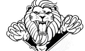 Mascot/Logo- Celebration Centre Lions